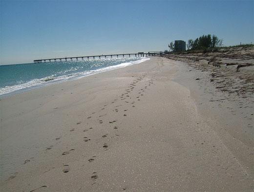Beach in Miami, Florida, 2005
