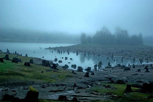 Cryptic Lake