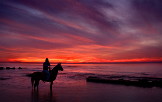 Sunset Horseman