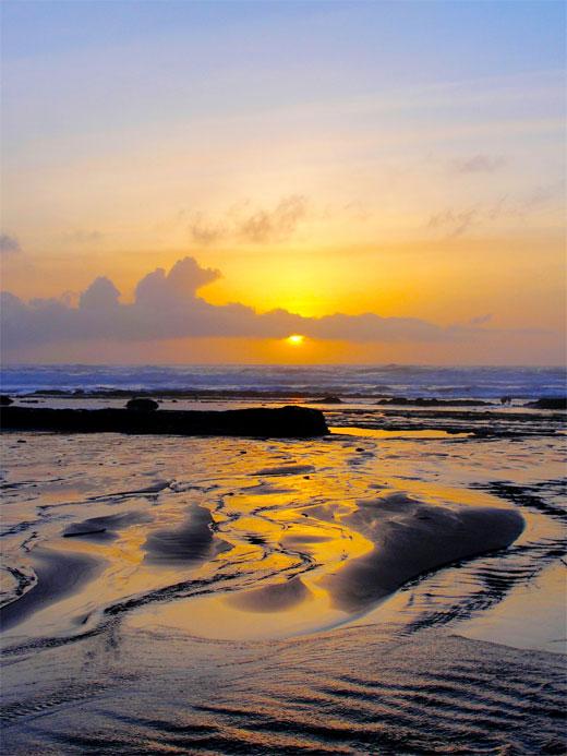 Fogerty Beach Sunset