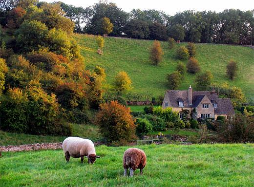 A Cotswold Autumn