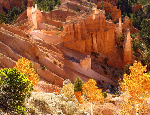 Bryce Canyon Gold