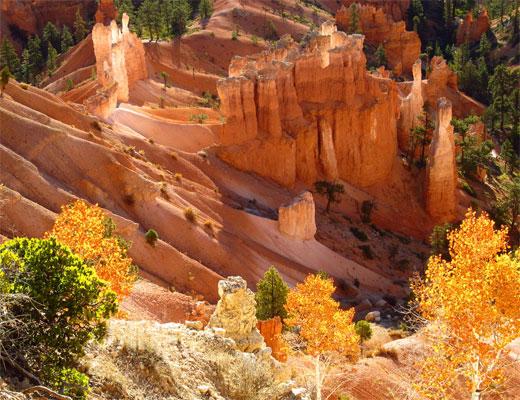 Bryce Canyon Gold