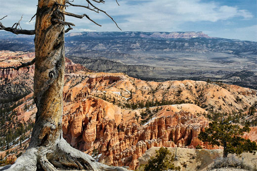 View from Bryce Canyon