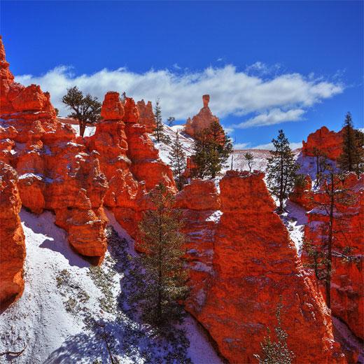 Below the Rim...Bryce Canyon