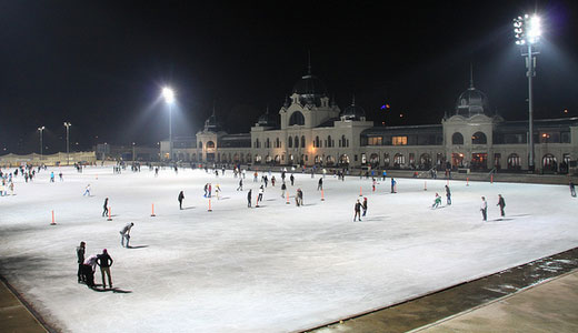 Ice-Skating Rink and Lake