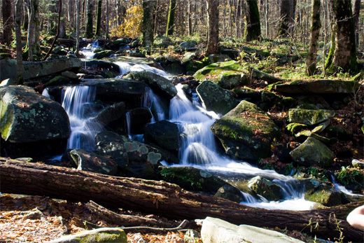 great smoky cascade