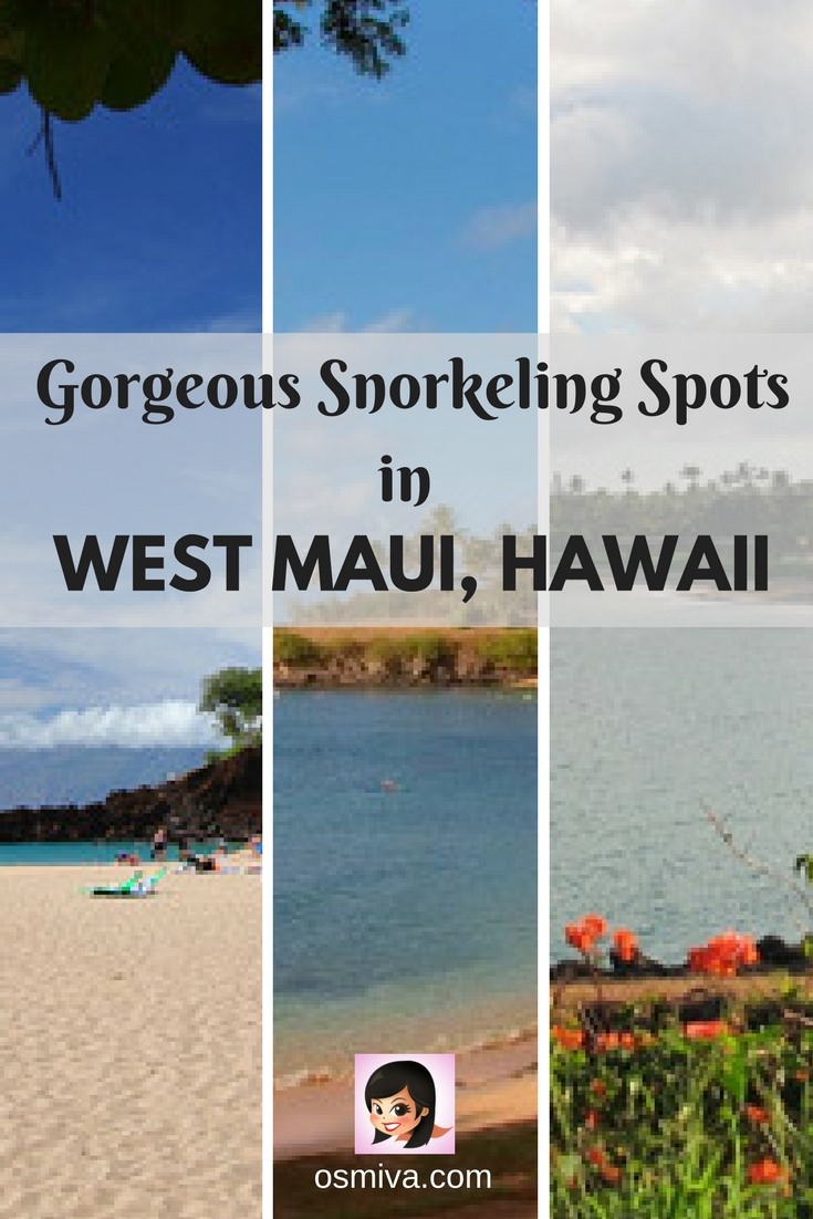 West Maaui, Hawaii. Travel Destinations. Travel Ideas. Hawaii. Snorkeling Spots in West Maui, Hawaii. Gorgeous Snorkeling Spots in West Maui, Hawaii #westmaui #hawaii #snorkelingspots #osmiva
