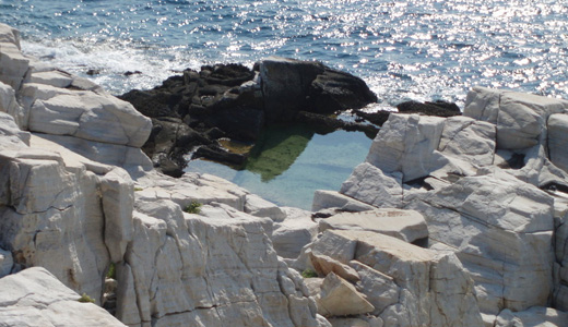 Natural Pool Wall