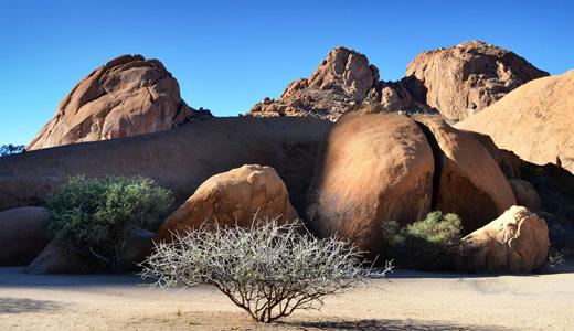 Namibia Winter