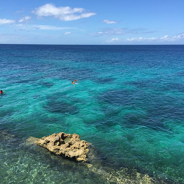 Snorkeling Fantastic Island