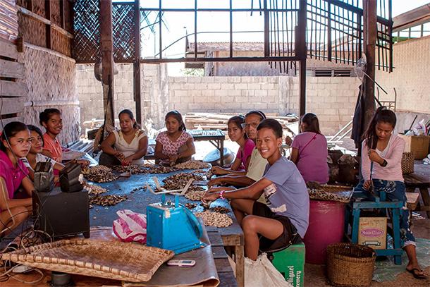 Coron Palawan Town Tour Cashew Harvest Factory