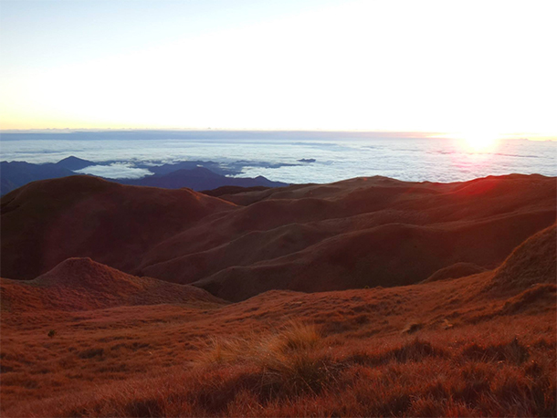 Trekking Mt. Pulag Sea of Clouds View