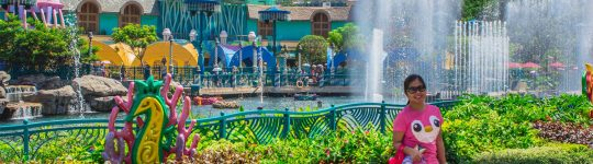 7 Reasons Why You Should Visit Theme Parks