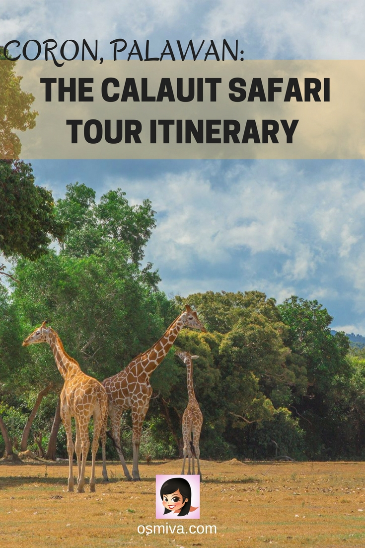 Coron, Palawan: The Calauit Safari Tour Itinerary. Complete itinerary on what to expect when you visit the Calauit Safari in Coron, Palawan in the Philippines. Plus the tour package and our side trip at the Busuanga Bay! #calauitsafari #calauitsafaritour #calauitsafariitinerary #coronpalawan #travelitinerary #tourreview #philippines #travelguide