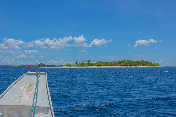 Calauit Safari Tour North Cay