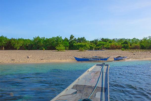 Calauit Safari Tour Pamalican Island