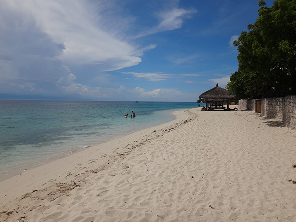 Things To Do In Moalboal, Cebu Beach Front