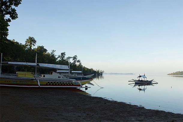Calauit Safari Tour Salvacion View