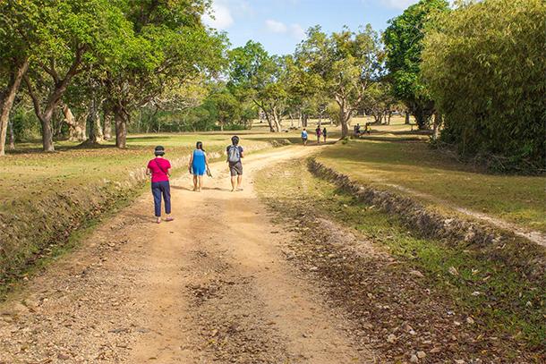 Calauit Safari Tour View on Foot