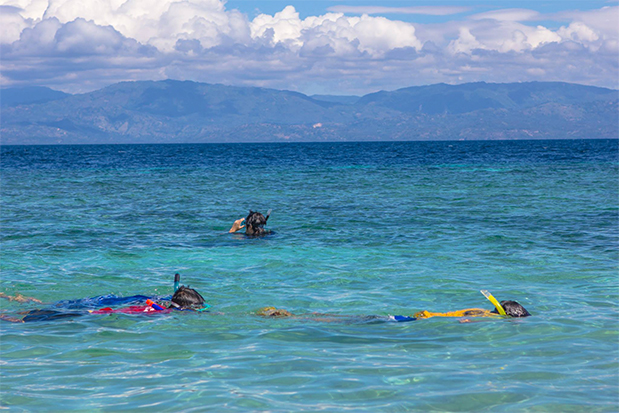 Things To Do In Moalboal, Cebu Snorkeling