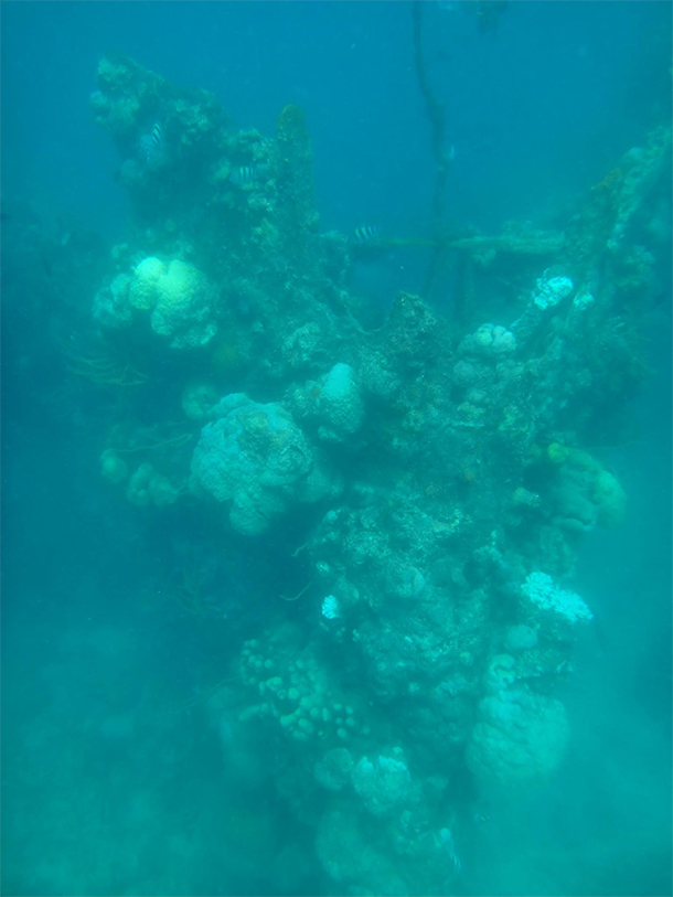 Coron Ultimate Tour Ship Wreck
