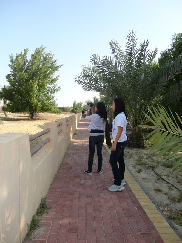 Bahrain Attractions Al Areen Pathway