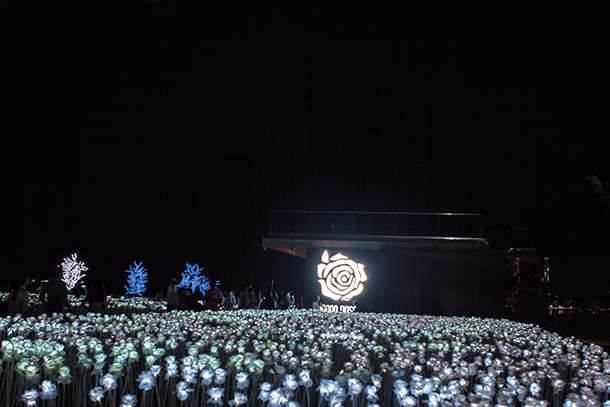 Cebu Day Tour 10,000 Roses