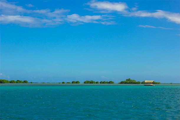 Palawan Philippines Photos: Dos Palmas Snorkeling Spot