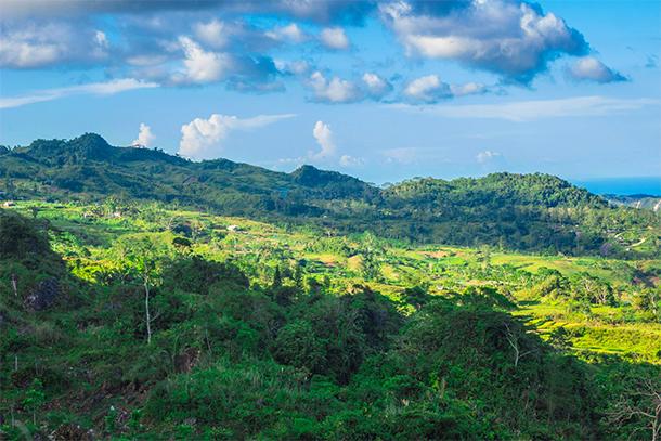 Osmeña Peak Hike: Dalaguete Cebu