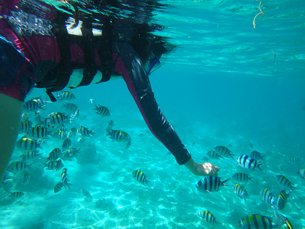 Island Hopping Mactan Cebu: Olanggo Island Fish Sanctuary