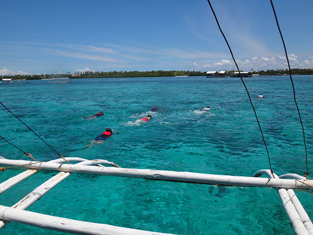 Island Hopping Mactan Cebu: Swimming