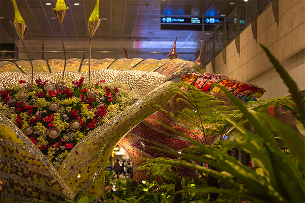 Singapore Photography: Changi Airport