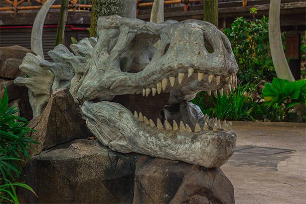 Singapore Photography: Universal Studios Singapore