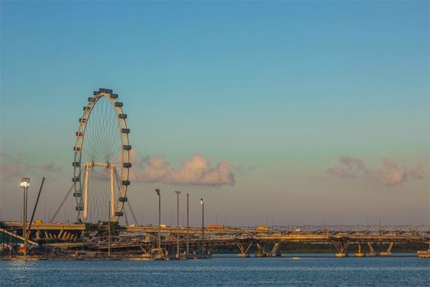 Singapore Photography: Helix Bridge and Singapore Flyer