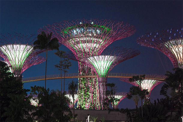 Singapore Photography: Gardens By The Bay