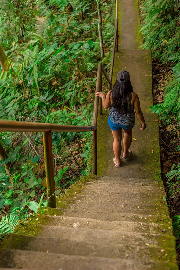Casaroro Falls Valencia Guide: Falls 300+ Steps
