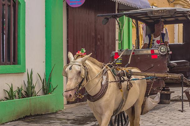 Ilocos Tour Photos: Vigan Kalesa