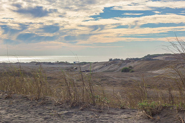 Ilocos Tour Photos: Sand Dunes in Ilocos