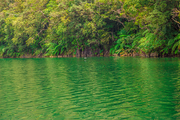 Twin Crater Lakes: Tranquil Lake