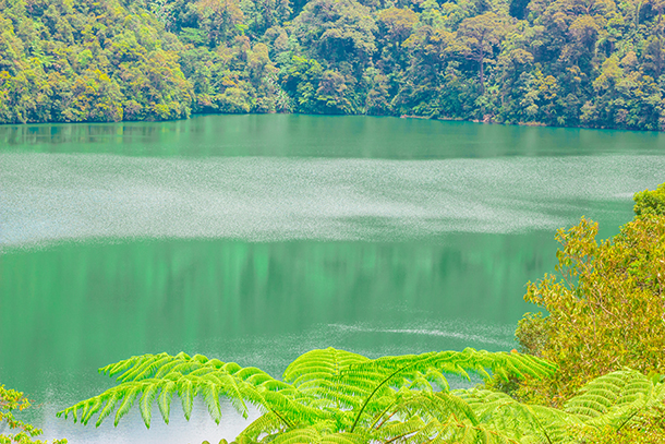 Twin Crater Lakes: Lake Danao Negros Oriental