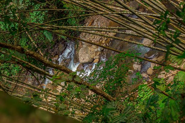 Negros Oriental Photos: View going to the Casaroro Falls