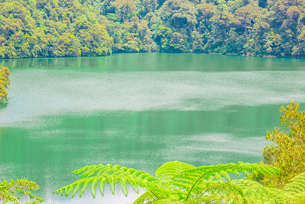 Negros Oriental Photos: Danao Lake
