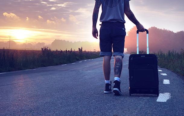 Travel Bag: Luggage