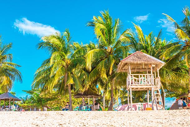 Photos of Kalanggaman Island: Lifeguard Station and Coconut Trees