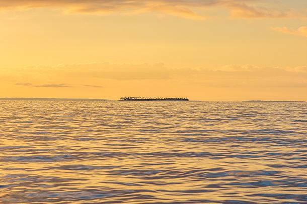 Photos of Kalanggaman Island: View of the Island from afar