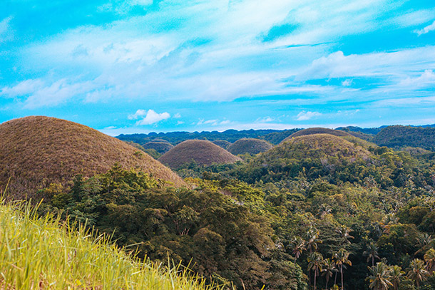 Chocolate Hills Up Close