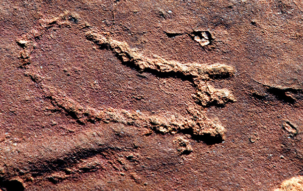 Matsieng Footprints