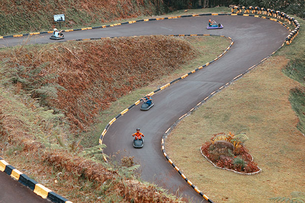 Forest Luge Track