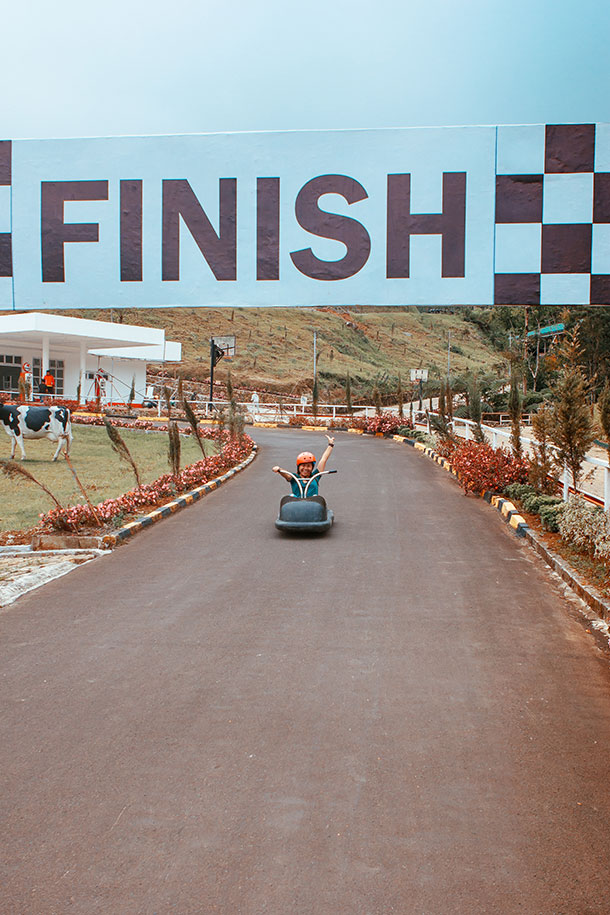 Forest Luge Finish Line